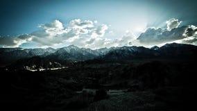 孤立杉木Timelapse加利福尼亚晃动云彩天空 股票视频