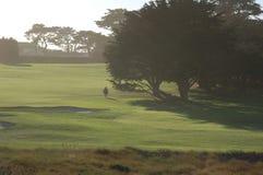 孤立的高尔夫球运动员 免版税库存照片