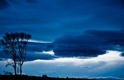 孤立结构树和风暴 图库摄影