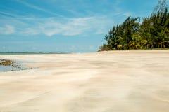 孤立舒展海滩处于低潮中 免版税库存照片