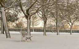 孤立长凳在用雪盖的公园 免版税库存图片
