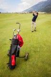 孤立高尔夫球运动员 库存照片