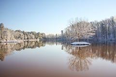 孤立结构树冬天 免版税库存照片