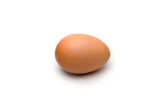 孤零零的鸡蛋 免版税库存图片