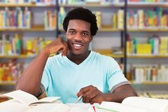 学习在图书馆里的男性大学生 库存照片