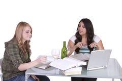 学习在他们的书桌的两个逗人喜爱的女孩 免版税库存图片