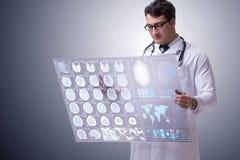 学习脑子mri扫描的结果男性医生 免版税库存图片