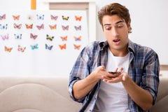 学习蝴蝶的新的种类学生昆虫学家 免版税库存照片