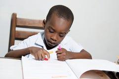 学习颜色的男小学生 图库摄影