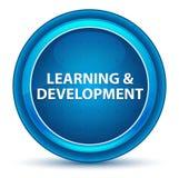 学习&发展眼珠蓝色圆的按钮 皇族释放例证