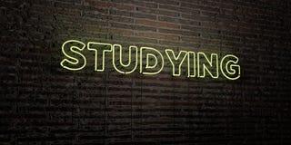 学习-在砖墙背景的现实霓虹灯广告- 3D回报了皇族自由储蓄图象 图库摄影