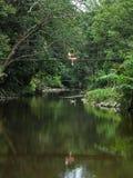 学会与生活方式的植物学家亚裔女孩冒险室外活动在雨林 库存图片