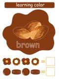 学会颜色 browne 孩子的教育比赛 颜色指南丝毫颜色名字 皇族释放例证