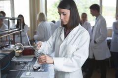 年轻医学开发商配药研究员 妇女天才chemistUniversity教授 实习生 p的开发的新的医学 免版税库存图片