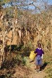 从学校到非洲孩子,坦桑尼亚,非洲77的回归 库存照片