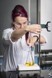 学校实验室 免版税库存照片