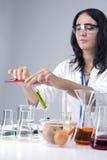 医学概念和想法 母实验室职员与烧瓶和果子标本一起使用在实验室环境里 图库摄影