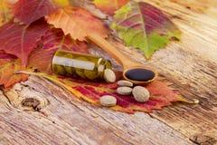 医学瓶、药片在叶子和糖浆在木匙子 免版税库存图片