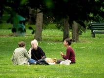 学生利用天气吃在一个公园的草的午餐和修改他们的baccalaureat的路线 图库摄影