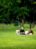 学生利用天气吃在一个公园的草的午餐和修改他们的baccalaureat的路线 免版税图库摄影