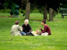 学生利用天气吃在一个公园的草的午餐和修改他们的baccalaureat的路线 免版税库存图片