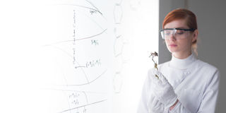 学生在化学实验室 免版税库存图片