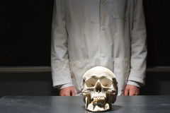 学生站立与一块人的头骨 库存图片