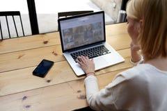 学生金发碧眼的女人坐在咖啡馆的一台膝上型计算机 免版税库存图片