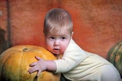 婴孩南瓜 图库摄影