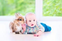婴孩和兔宝宝 库存照片
