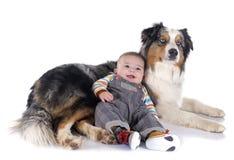 婴孩和澳大利亚牧羊人 免版税库存照片