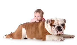婴孩和狗 库存图片
