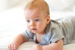 婴孩四个月 库存照片