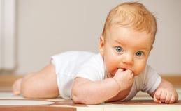 婴孩四个月 库存图片