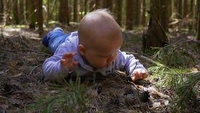婴孩在森林失去了 股票录像
