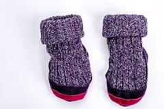 孩子两只羊毛被编织的袜子 库存图片