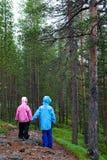 孩子二个森林 库存照片