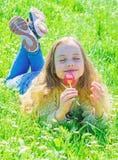 孩子享受郁金香芬芳,当说谎在草甸时 平安的面孔的女孩在晴朗的春日拿着红色郁金香花 免版税图库摄影