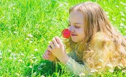 孩子享受郁金香芬芳,当说谎在草甸时 有说谎在grassplot,草背景的长发的女孩 ?? 库存照片