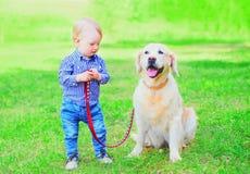 孩子使用与在草的金毛猎犬狗在夏天 免版税库存照片