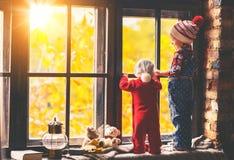 孩子兄弟和秋天的姐妹赞赏的窗口 库存照片