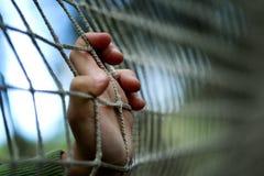 孩子关在监牢里在风雨棚的,无家可归者 库存照片