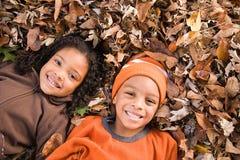 孩子叶子位于 库存图片