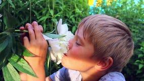 孩子吸入开花的花芳香  影视素材