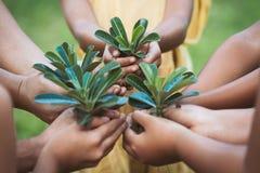 孩子和父母在手上的拿着年轻树种植的 免版税库存图片