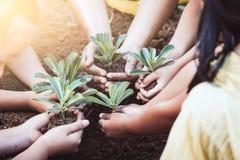 孩子和父母在手上的拿着年轻树种植的 库存图片