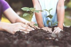 孩子和父母递一起种植在黑土壤的年轻树 库存照片