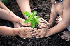 孩子和父母递种植在黑土壤的年轻树 免版税库存图片