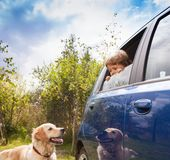 孩子和狗看看彼此 免版税库存照片