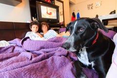 孩子和狗 免版税库存照片